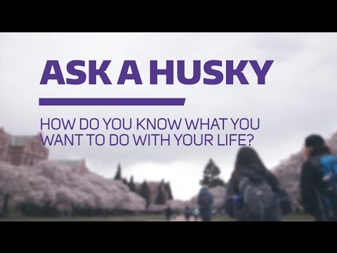 Ask a Husky: How do you know what you want to do with your life?