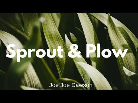 Spout & Plow  Joe Joe Dawson