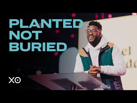 Planted Not Buried  Micheal Todd