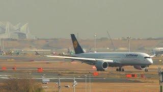 Stunning Landing Lufthansa A350 Tokyo Haneda Airport