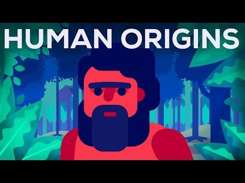 What Happened Before History? Human Origins - UCsXVk37bltHxD1rDPwtNM8Q
