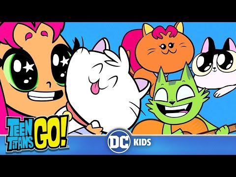 Teen Titans Go! | A Funny Cat Video | DC Kids - UCyu8StPfZWapR6rfW_JgqcA