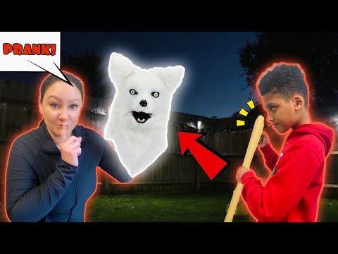 THERE IS A WOLF IN OUR BACKYARD PRANK!!! *The Nev Fam* | PRANK FAILS
