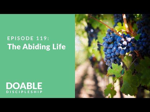 E119 The Abiding Life