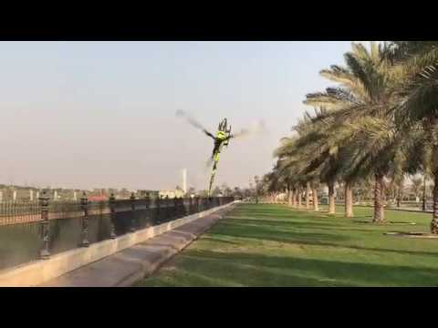 Tareq Alsaadi - Goblin Havok-Palmiyeler arası uçuşu