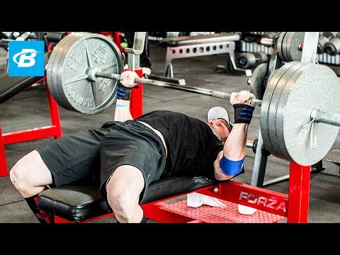 How To Bench Press: Layne Norton's Complete Guide - Bodybuilding.com - UC97k3hlbE-1rVN8y56zyEEA