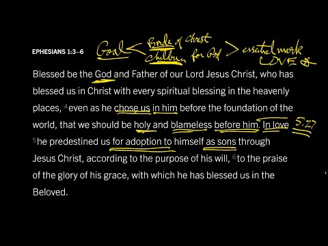 Ephesians 1:36 // Part 11 // Holy in Love or Adopted in Love?