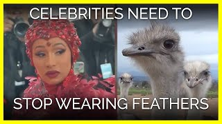 Why Celebrities Need to Stop Wearing Feathers