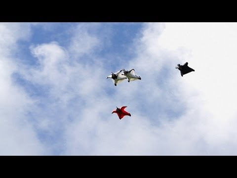 Possibly The Best Wingsuit Flying Ever Captured On Video | HeliBASE 74 ep. 4 - UCFdWDF3q3R2AphJ1InJWMlg