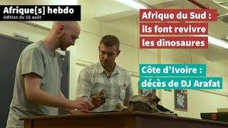 Des dinosaures en Afrique du Sud, décès de DJ Arafat en Côte d'Ivoire... ➡️ Afrique[s] | AFP News