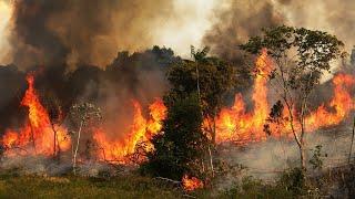 Fires in Brazil's Amazon basin fan climate fears