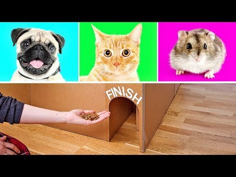 3 Cool Cardboard Crafts That Will Knock Your Socks Off - UCw5VDXH8up3pKUppIvcstNQ