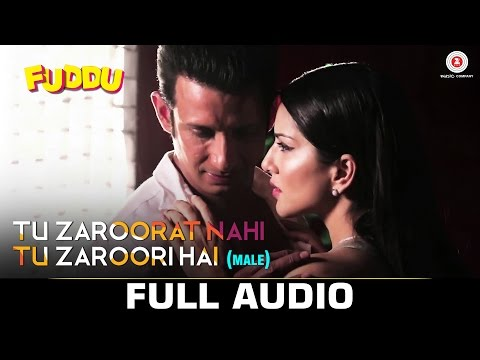 Tu Zaroorat Nahi Tu Zaroori Hai Lyrics (Male Version) - Fuddu