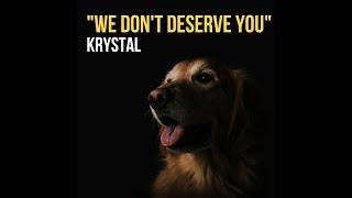 We Don't Deserve You - krystalbsmuzik , Pop