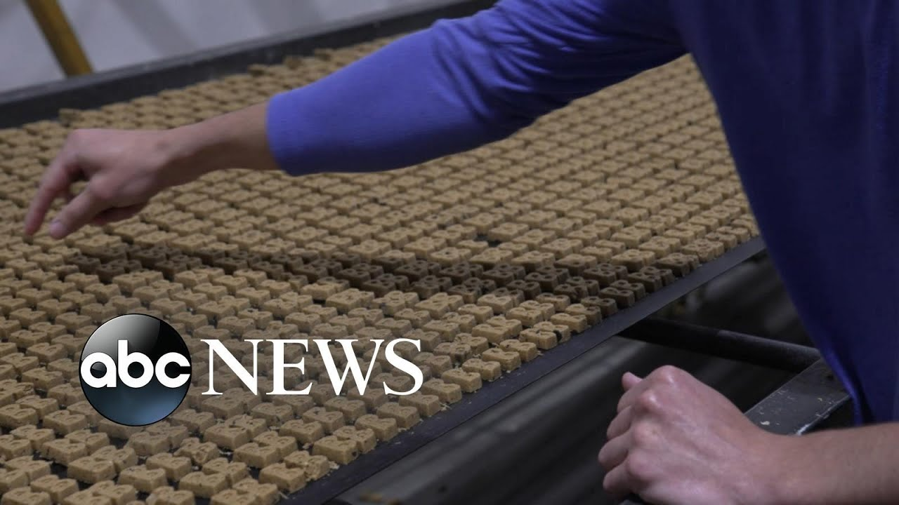 Made in America: Company makes treats for man's best friend   WNT
