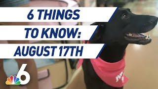6 Things to Know - August 17th