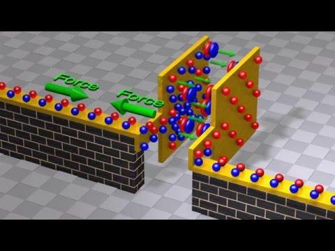 Capacitors and Capacitance: Capacitor physics and circuit operation - UCJ0yBou72Lz9fqeMXh9mkog