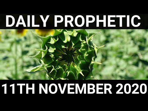 Daily Prophetic 11 November 2020 7 of 12 Subscribe for Daily Prophetic Words
