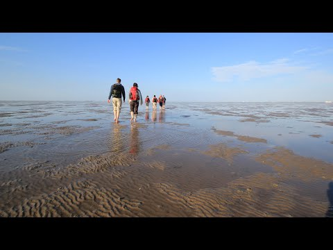 Wadden Sea World Heritage | 360 video photo