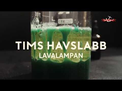 Tims havslabb - Lavalampan