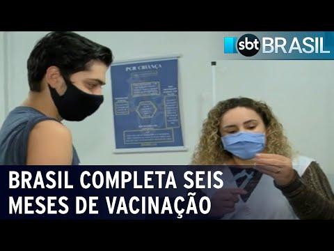 Campanha de vacinação contra a covid-19 no Brasil completa seis meses   SBT Brasil (17/07/21)