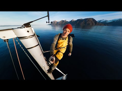 GoPro Awards: Norway Whale Watching in VR with GoPro Fusion in 4K