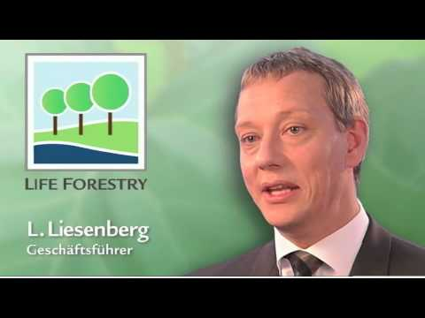 Life Forestry. Optimales Klima für Teakholzinvestments!