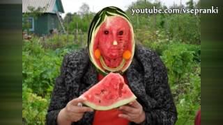 ЗН - Зина кушает арбуз (z.) 2016 (пранк со спидовой бабкой)