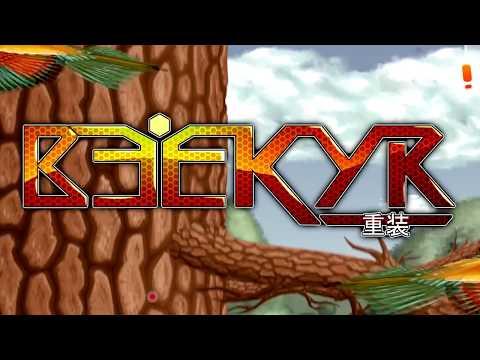 Beekyr 重装 (2017)