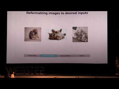 Diana Spencer - Machine Learning (Kompetensbio Ep.8) PART 2