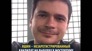 Илья Яшин вновь
