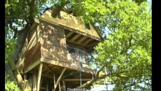 Brandon parva Treehouse