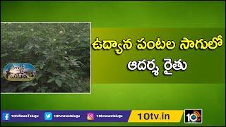 ఉద్యాన పంటల సాగులో ఆదర్శ రైతు | Success Story of Horticulture Crops by Narra Ajay Kumar | 10TV News