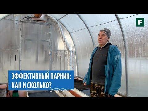 Утепленный парник в условиях суровой Карелии: советы опытного садовода // FORUMHOUSE