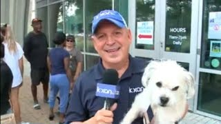 KXAN helps central Texas Clear The Shelters