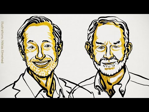 Premio Nobel de Economía 2020 a Paul R. Milgrom y Robert B. Wilson por su teoría de subastas