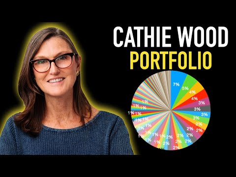 Cathie Wood Portfolio & Top 5 Investments! – Investing Made Simple – Nathan Sloan