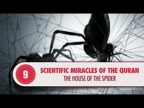 Scientific Miracles of the Quran, 9 - The House of the Spider