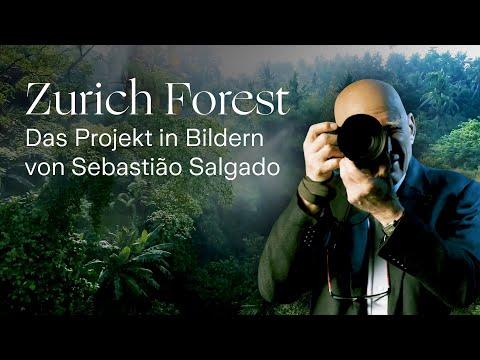 Sebastião Salgado erklärt den Zurich Forest mit seinen Bildern