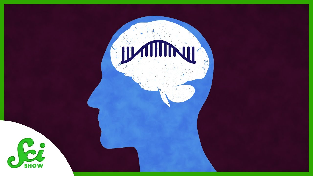 Could We Spot Alzheimer's Early With RNA?   SciShow News
