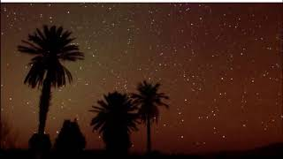 SUONI DESERTO DEL SAHARA -  SAHARA DESERT SOUND - ASMR - Creative Commons (Progetto Adelfi)