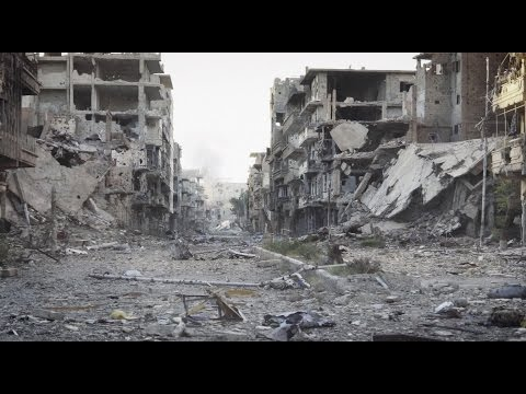 Humanitarian System | Global Future Council (Subtitled)
