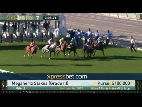 Megahertz Stakes (Gr. III) - January 16, 2017