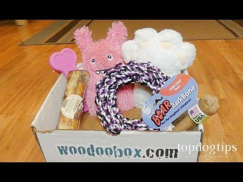 WooDoo Box Dog Subscription Box Review