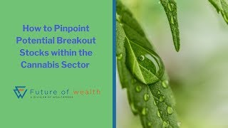 How to Pinpoint Potential Breakout Stocks within the Cannabis Sector