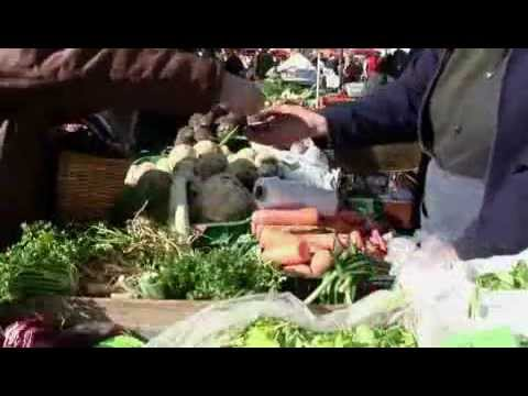 Solve Hunger Worldwide by Creating Local Food Abundance