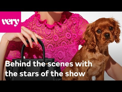 very.co.uk & Very Voucher Code video: Behind The Scenes: Dog Fashion Shoot | Very Fashion
