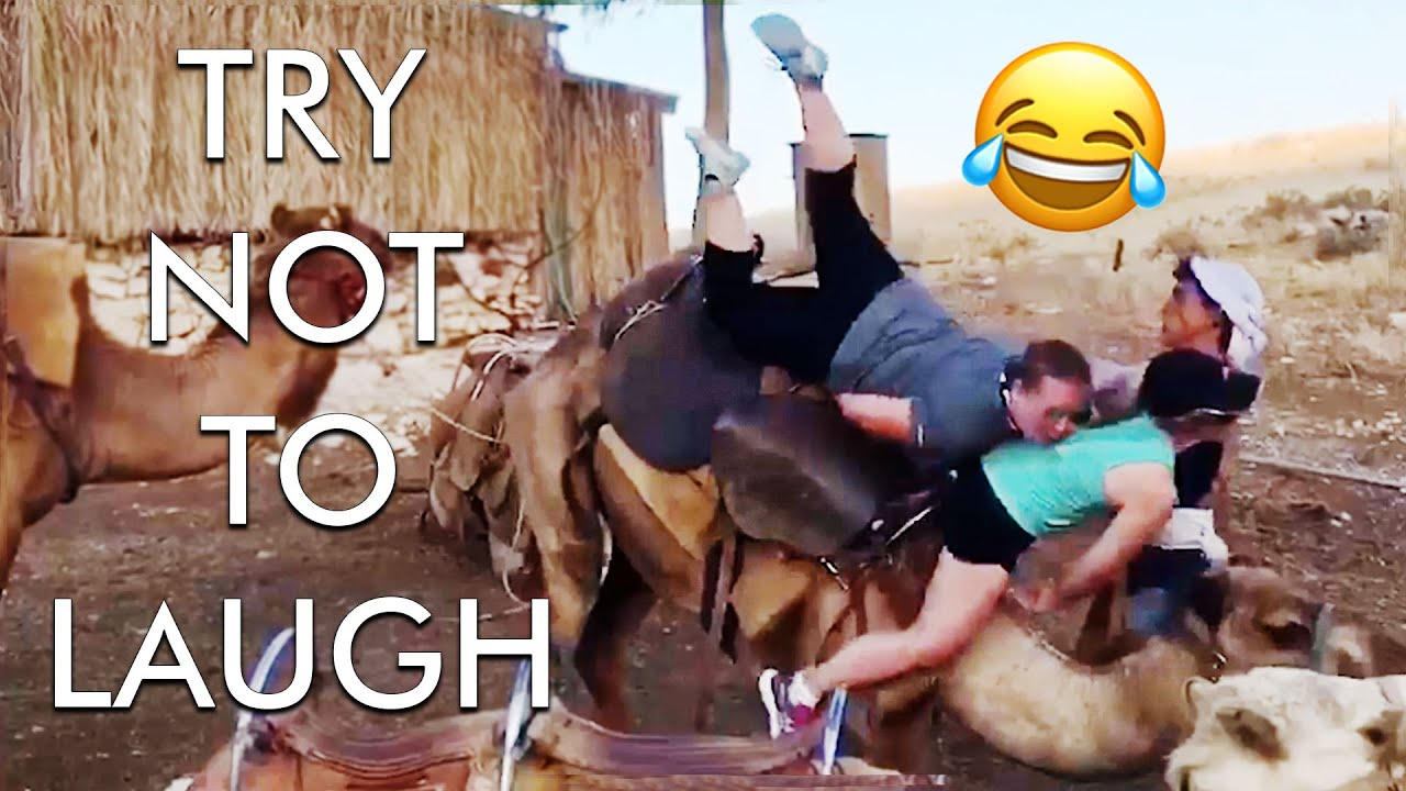Try Not to Laugh Challenge! Funny Fails 😂 | Funniest Fails of the Week | Funny Videos | AFV Live