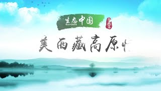 Eco-China: Tibet Autonomous Region