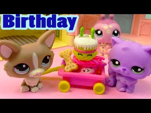LPS Shopkins It's My Birthday Littlest Pet Shop Annoying Happy Cake - UCelMeixAOTs2OQAAi9wU8-g